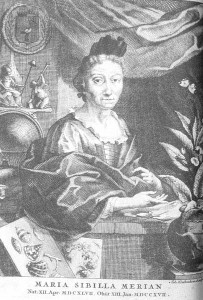 Engraving of a Anna Maria Sibylla Merian (1647-1717) portrait by her son-in-law Georg Gsell (from Chrysalis)