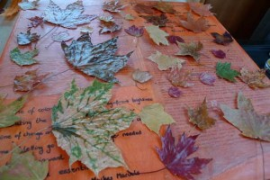 Watching Leaves Turn: maple leaf encaustic collage by Maike's Marvels, wall decor