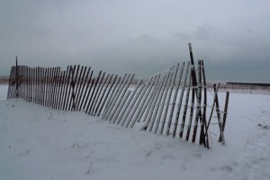 dunefence1