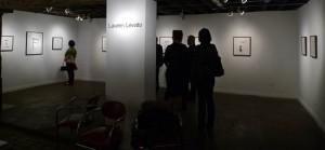 Lauren Levato Wunderkammer Show