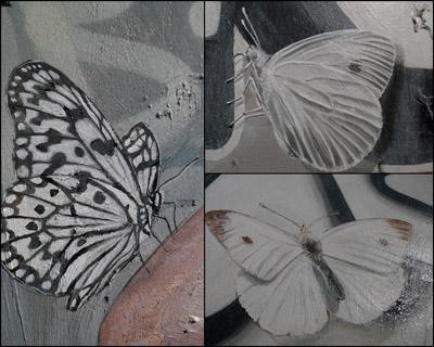OkamuraButterflies