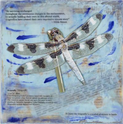 282_Dragonfly12SpottedSkimmer