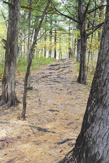 8a_trail