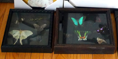DarkShadowBoxes