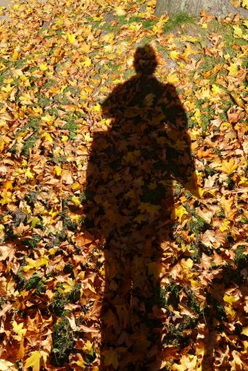 FallShadowGold