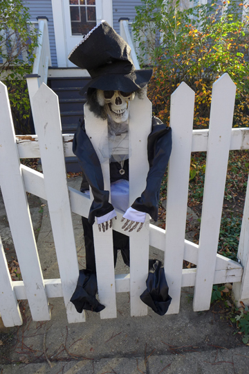 FenceSkeleton