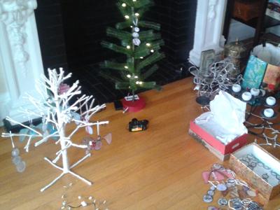 ornamentshoot