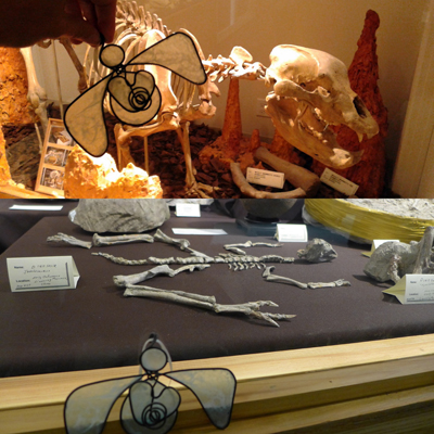 davesprehistoricmuseum