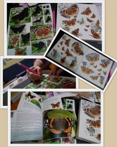 Red Admirals cut-outs by Maike's Marvels