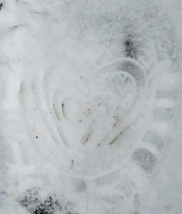 heartprint by Maike's Marvels