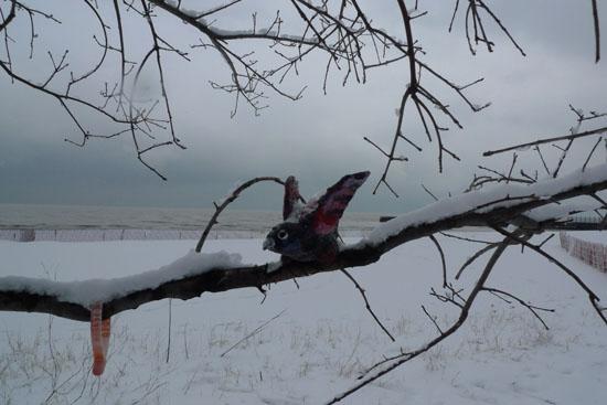 pinkbird1
