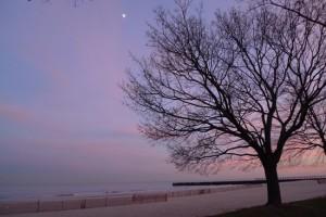 stillness by the lake, Maike's Marvels