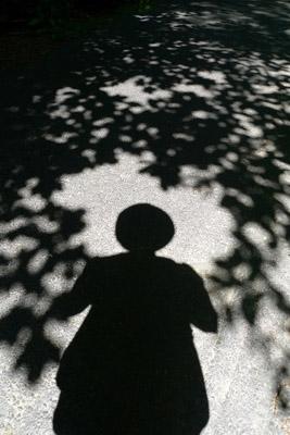 27Shadow