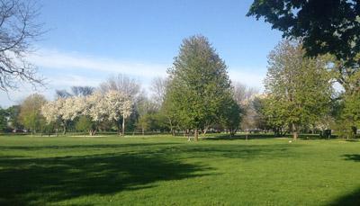 washington park1