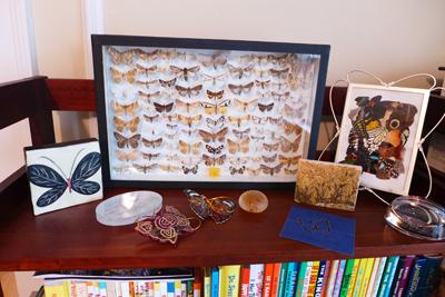Butterflyshelf