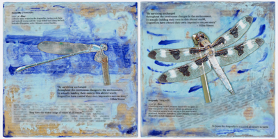 Dragonfly-Damselfly_encausticcollage