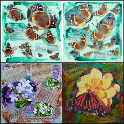 543_Collages-Coynes-Dragonfly