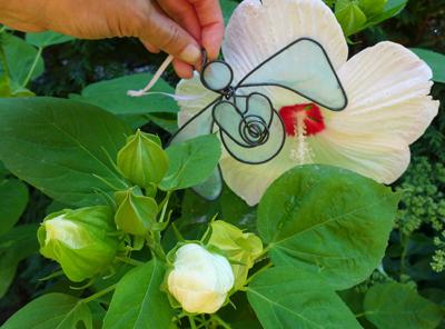 whiteflowerangel