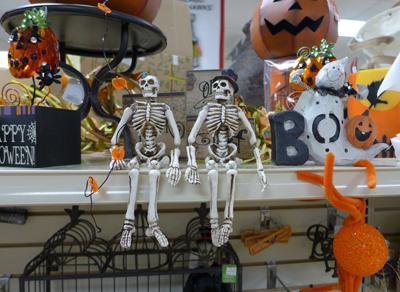 skeletonsplatt